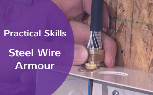 Picture of Practical Skills - Cable Termination: Steel Wire Armour