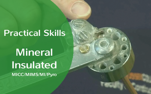 Picture of Practical Skills - Mineral Insulated MICC/MIMS/MI/Pyro