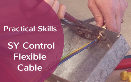 Picture of Practical Skills - SY Control Flexible Cable